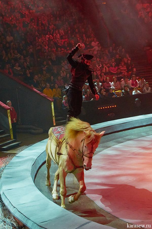 актеры цирка на вернадского фото яркий вкус хорошо